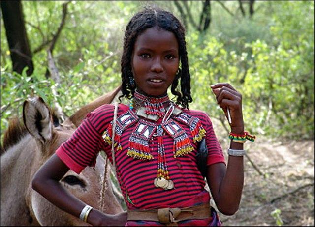 eritrea and ethiopia essay