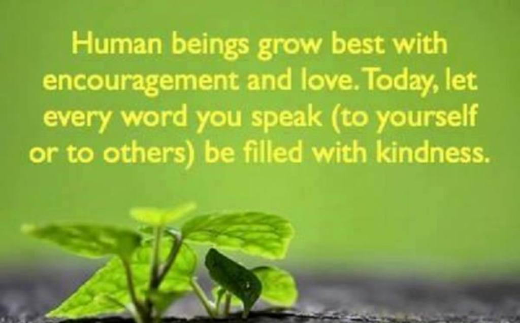 Human beings grow best with encouragement and love