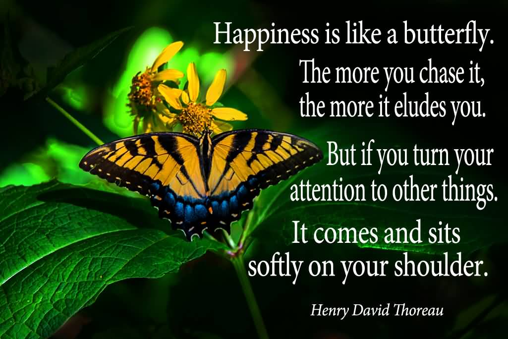 Happiness is like a butterfly…