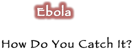 Ebola: How Can You Catch Ebola…