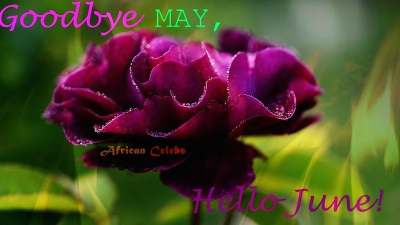 Goodbye May Hello June: Happy New Month Everyone