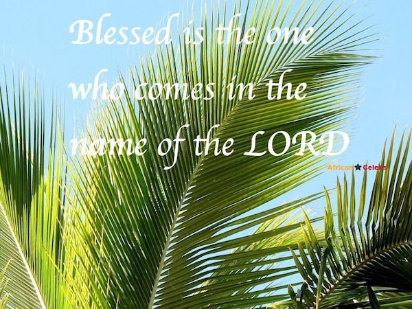 Happy Palm Sunday Everyone…