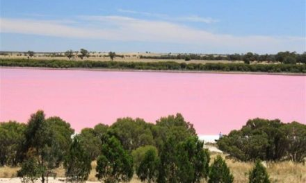 Pink Lakes: Lake Retba of Senegal is pink in color – Amazing!