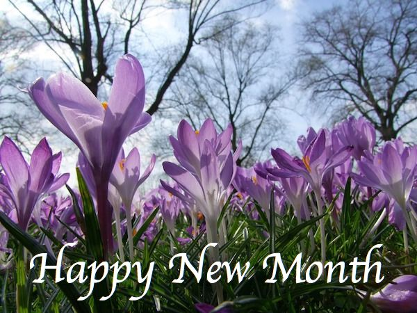 Happy new month everyone! February 2017 This year will be a most fruitful year for you! -AFRICAN CELEBS