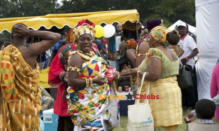 Photos And Videos: Ghana Party In The Park 2017 Highlights