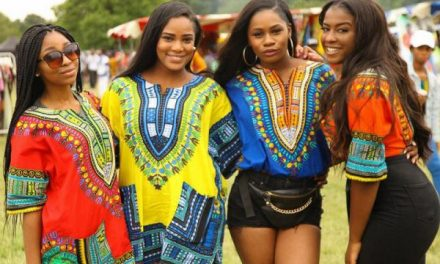 GHANA PARTY IN THE PARK 2019: 13 July 2019 At Trent Park, Enfield