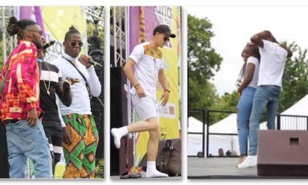 Ghana Party in the Park 2019 Highlights
