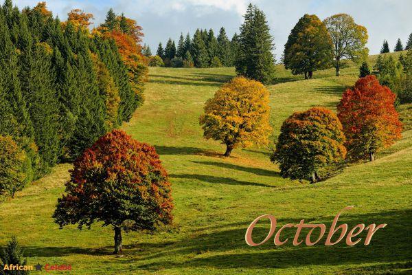 Hello October  – Happy New Month