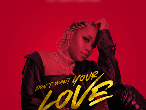 Valee Music releases a soulful Amapiano single 'Don't Want Your Love'